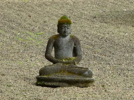 BuddhaAug2011